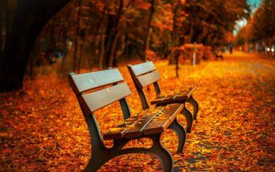 Efteråret er på vej